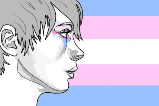 transgender_pride___flag_by_ash_not_ketchum-d93awzc